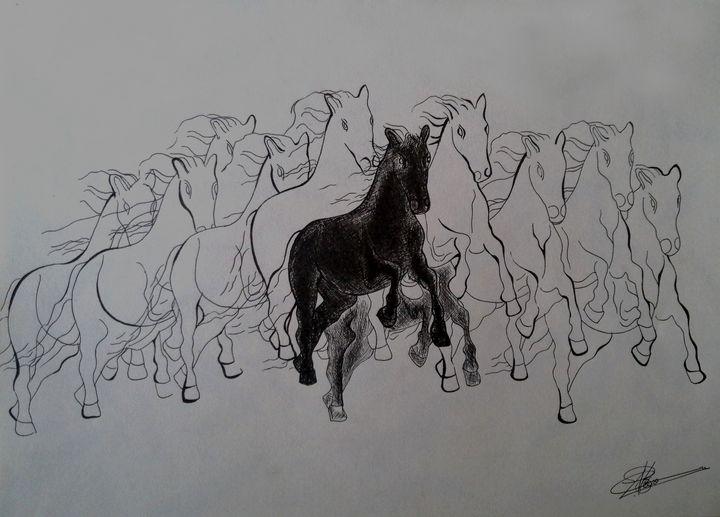 11 Horse - Artist navi