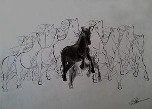 11 Horse