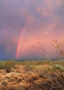 Rainbow over pink sky