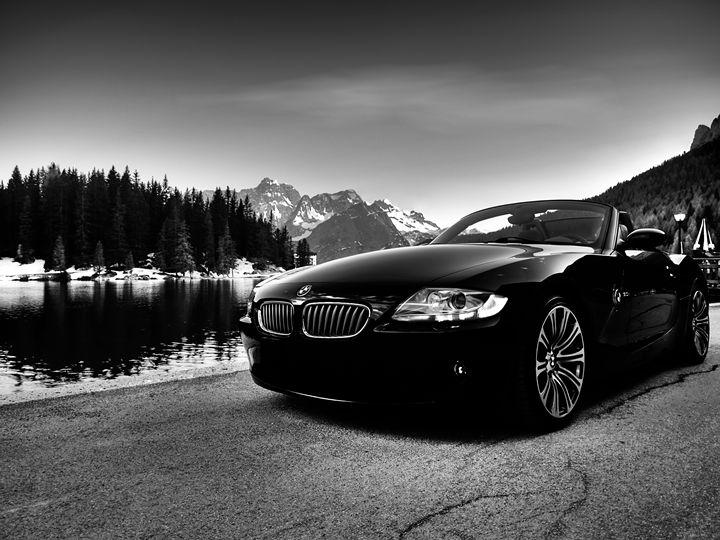 BMW Z4 Zoom - bugstore