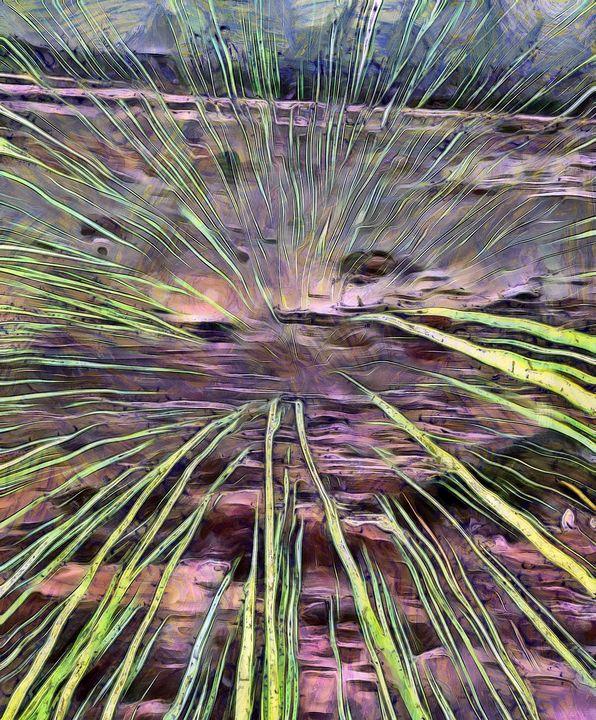 Pink Grass Reveal - Stocksom Art Prints