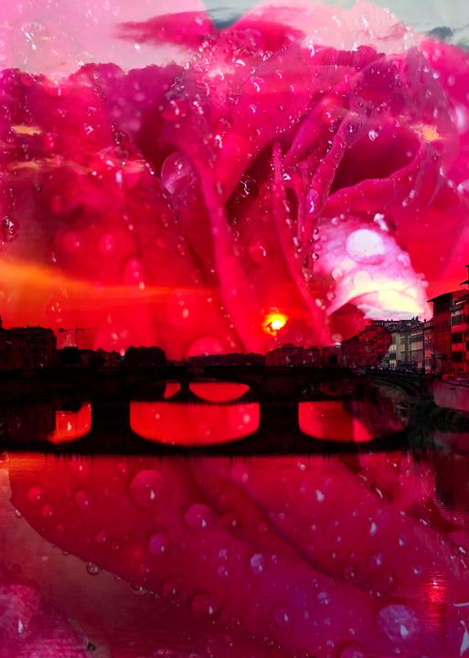 Through Rose Coloured Glasses - Stocksom Art Prints