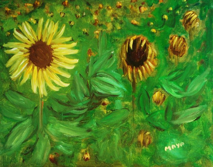 A field of sunflowers - Maya Art
