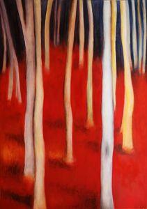 Foresta di Faggi (Beech Forest)