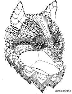 Husky Line Drawing