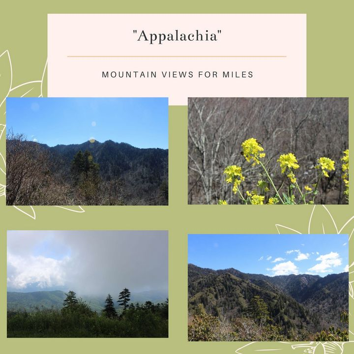 Appalachia Stationary Pack - Worth Writing Home About