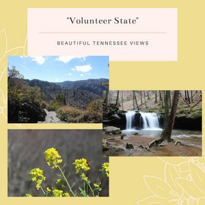 Volunteer State Stationary Pack