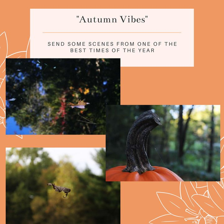 Autumn Vibes - Worth Writing Home About