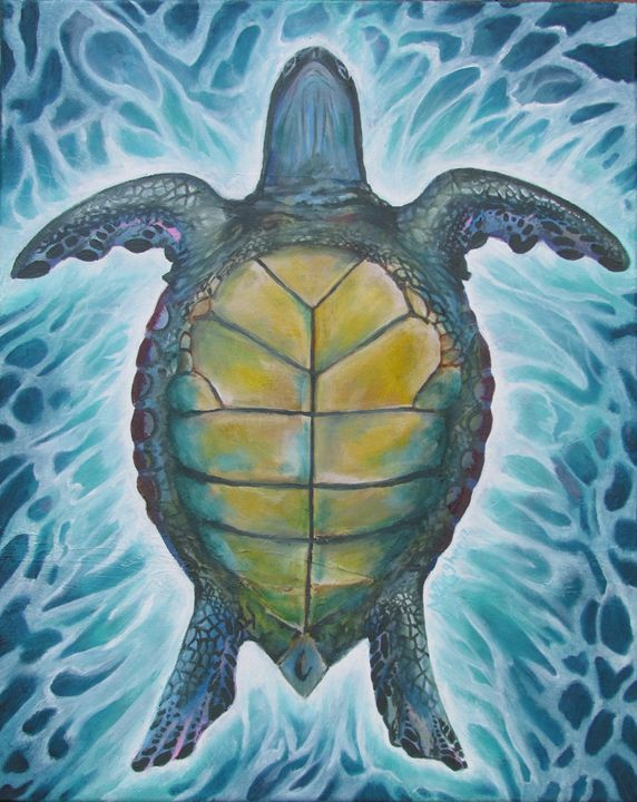 Turtle from below - Burgher