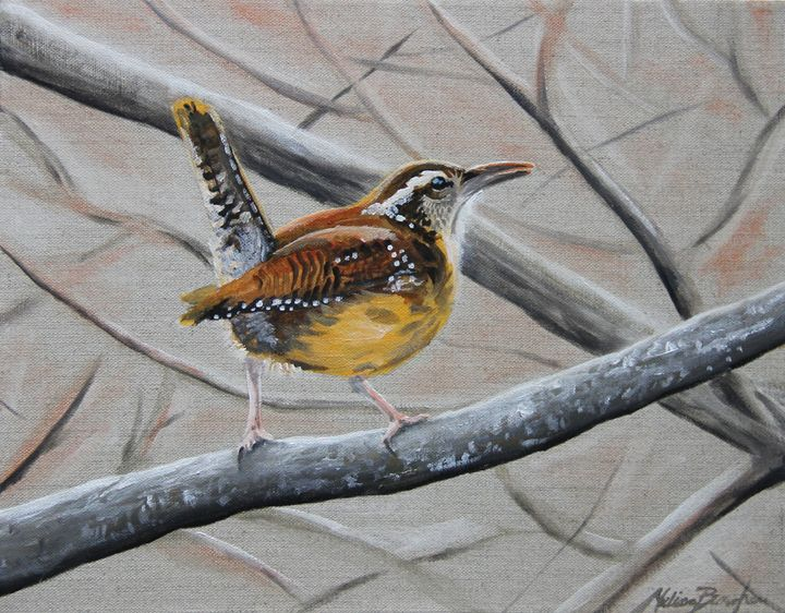 The Wise Wren - Burgher