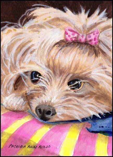 Origina Art - Yorkshire Terrier - Patricia Ann Rizzo