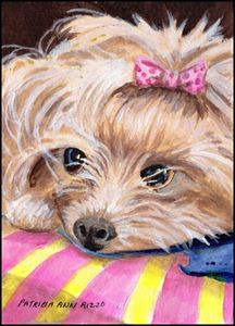Origina Art - Yorkshire Terrier