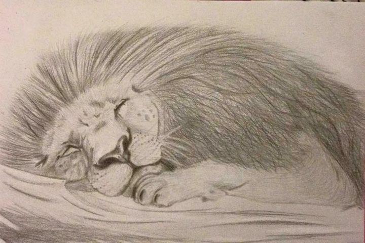 Sleeping Lion - Animal Arts