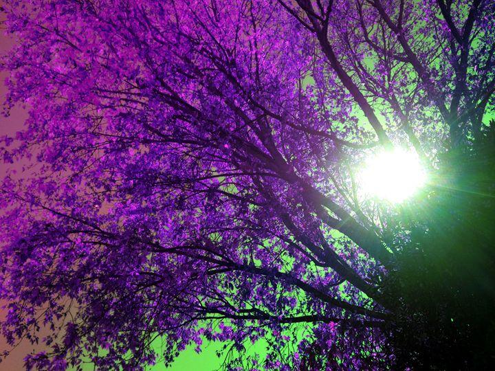 purple tree - Vyctorieah