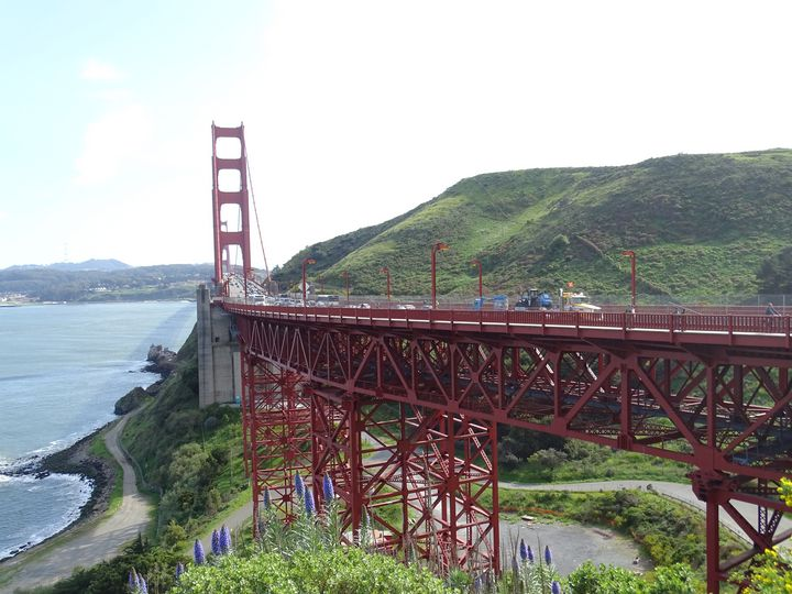 Golden Gate - Vyctorieah