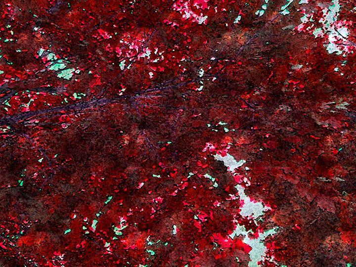 Red flurry - FoxyStars