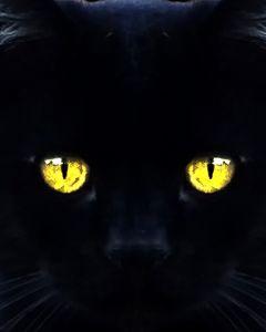Stare into my soul