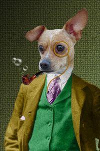 Dapper Dog - Vyctorieah