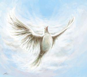 Soar on the wings of wind