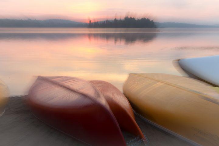 Sunrise Movement - Maureen's Moments