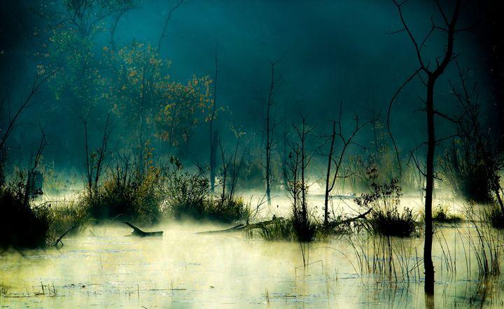 Surreal Morning Mist - Maureen's Moments