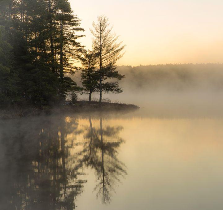 Morning Light - Maureen's Moments