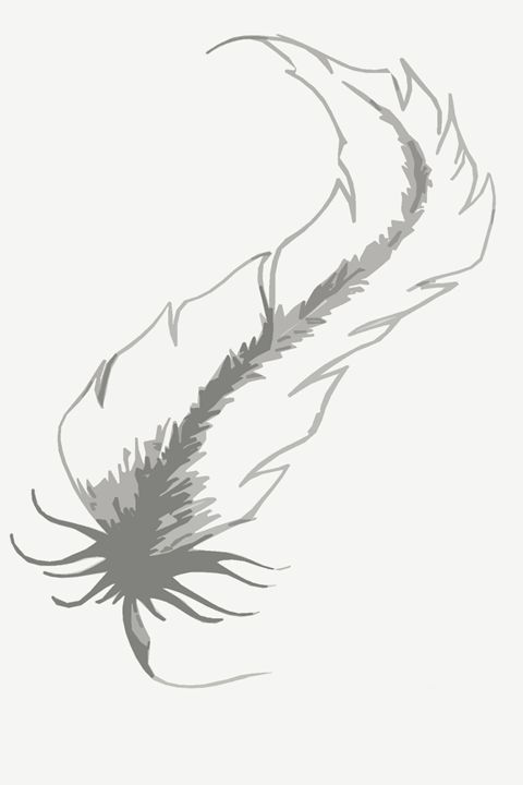 Feather Tattoo 2 - Cecelia C Gallery