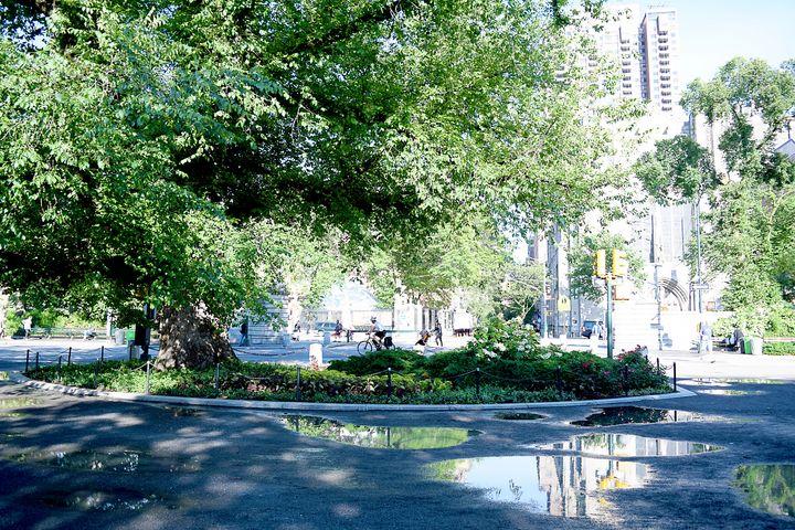 Central Park - Creative Gallery