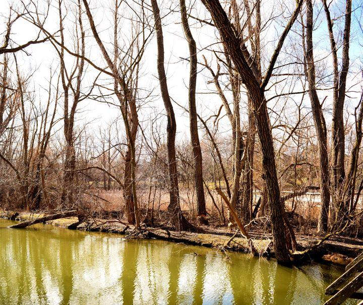 Green Lake - Creative Gallery