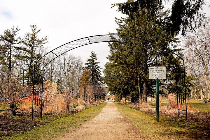 Garden Trail - Creative Gallery