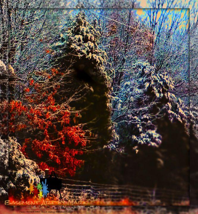 Missouri winter - Basement Art by Mark