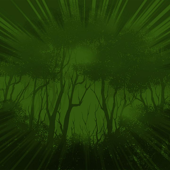 Woods - holyspoof
