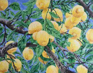 Lemon Orchard