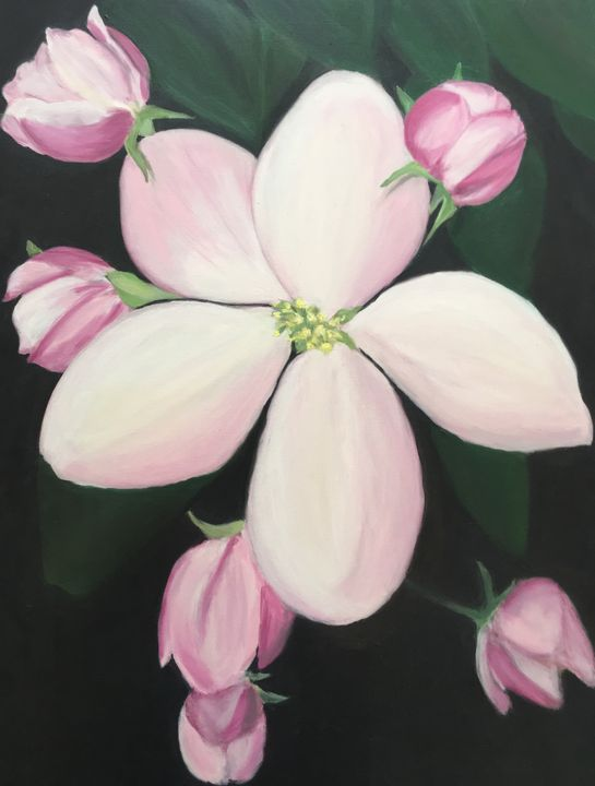 Apple Flowers - Emotion