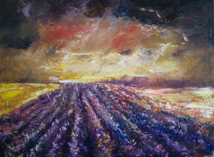 lavender field - Natalia Esanu   NEsanu