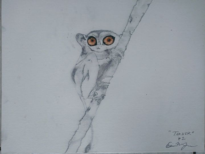 Tarsier Series Species 2: Gold Eyed - E.M. Zerbe