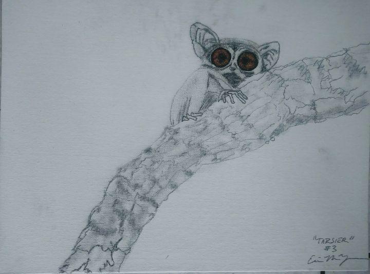 Tarsier Series Species 3: Dark Eyed - E.M. Zerbe