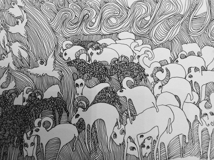 Sheep - The untitled and unknown