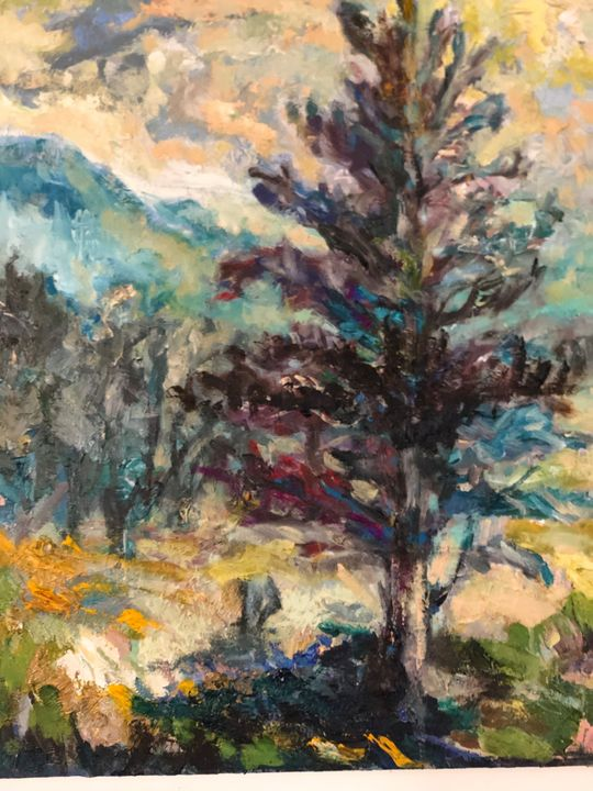 The beautiful pine in the mountains - The untitled and unknown