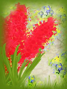Red Hyacinths By the Stone Path - Sue Whitehead Arts