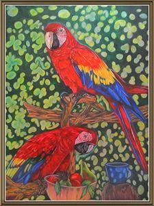 Pencil Color birds - Andre Silvera