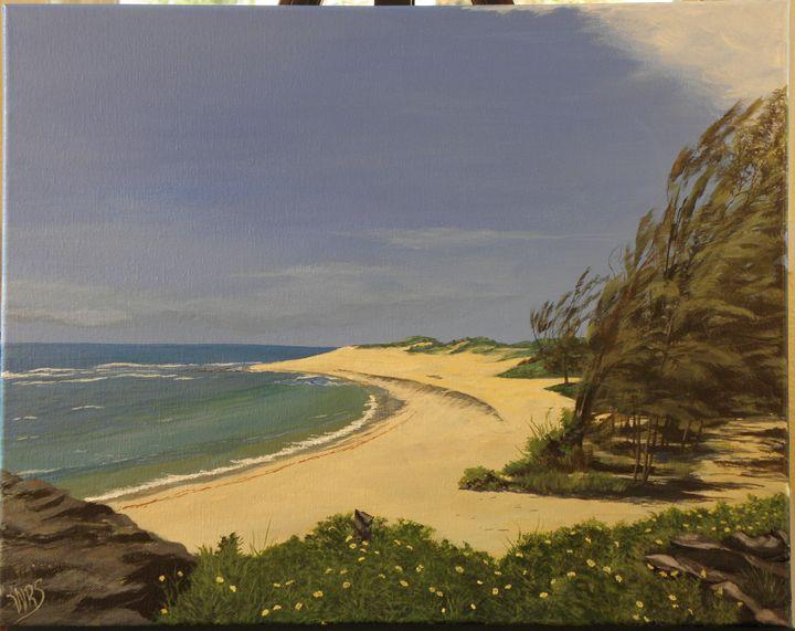 Kauai Windy Beach - WSanders Gallery