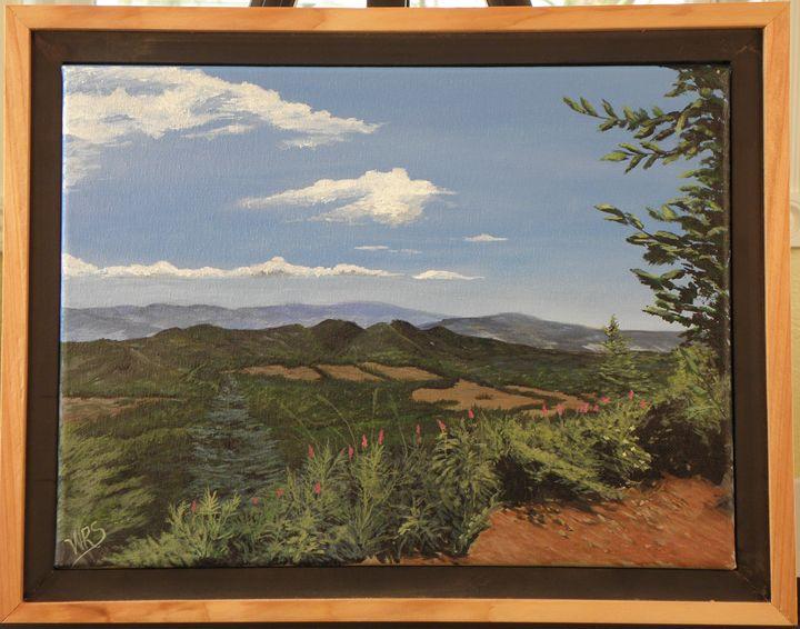 Saddle Mt. Vista - WSanders Gallery