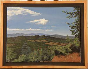 Saddle Mt. Vista