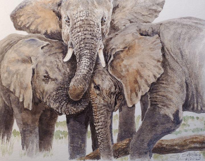 Elephant calves - Stewart Shang