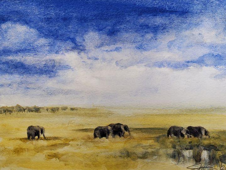 Elephants - Stewart Shang