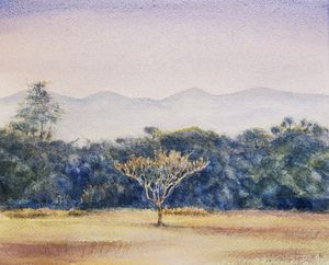 Ngong Hills, Karen, Kenya