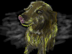 Neon friendly dog