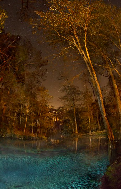 Ethereal Glow of Twin Springs - Outdoor Florida Creations