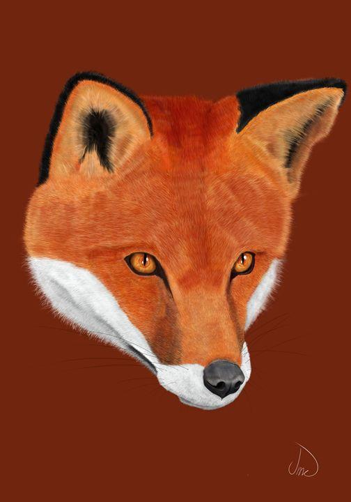 The Fox - Jayden McLeod